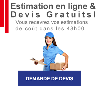devis transport bagages